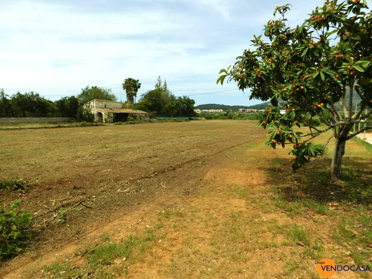 Finca to reform on a huge plot