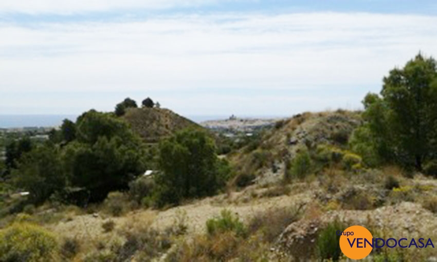 Huge 16253 M2 plot in Altea